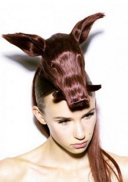 Boars head - Hagi Noda